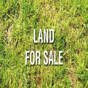 0.75 acres on Kirichwa Road